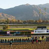 Caption:  turf workers including The Fugue<br /> Breeders' Cup horses and connections at Santa Anita near Acadia, California, preparing for Breeders' Cup raceways on Nov. 1 and Nov. 2, 2013.<br /> BCWorks2Jpegs_10_31_13 image498<br /> Photo by Anne M. Eberhardt
