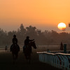 Caption:  Sunrise <br /> Breeders' Cup horses and connections at Santa Anita near Acadia, California, preparing for Breeders' Cup raceways on Nov. 1 and Nov. 2, 2013.<br /> BCWorks02RAW_10_27_13 image814<br /> Photo by Anne M. Eberhardt