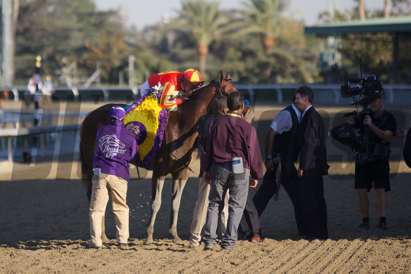 Martin Garcia celebrates winning the Xpressbet Breeders' Cup Spring (G. I). Photo by Crawford Ifland.
