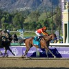 Secret Circle, Martin Garcia up, wins the Xpressbet Breeders' Cup Sprint (G. I). Photo by Crawford Ifland.