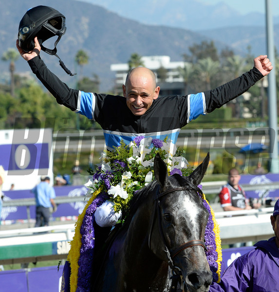 Mizdirection with jockey Mike Smith comes up on the outside to win the Breeders' Cup Turf Sprint at Santa Anita Park in Arcadia, CA.  November 1, 2013.  Photo by Skip Dickstein