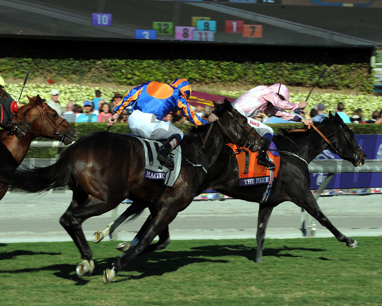Magician gaining on The Fugue during the Breeders' Cup Turf.<br /> Photo by Dave Harmon
