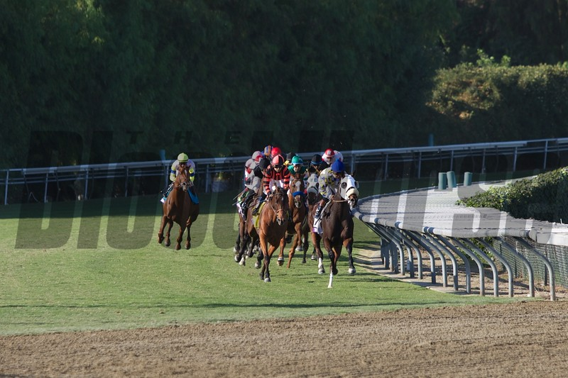 The field came down the hill in the Breeders' Cup Turf (G. I). Photo by Crawford Ifland.