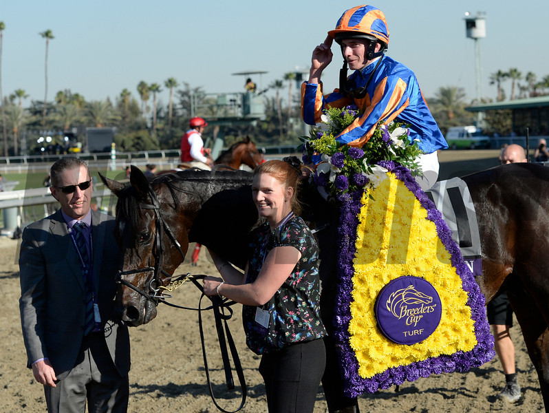 Magician wins the Breeders' Cup Turf.  Photo by Skip Dickstein