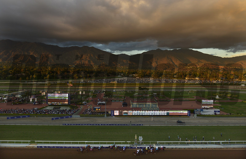 Bayern and jockey Martin Garcia lead the pack as the pass by the first time in the Breeders Cup Classic Saturday at Santa Anita.<br /> Wally Skalij Photo