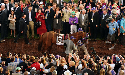 California Chrome walks by his connections in the paddock before the start of the Breeders Cup Classic at Santa Anita Saturday. Photo by Wally Skalij