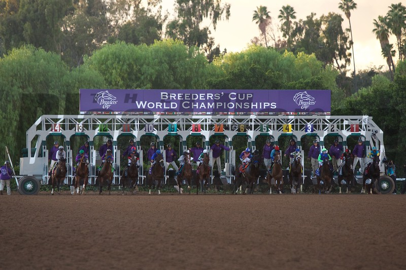 The field breaks from the gate at the start of the Breeders' Cup Classic (G. I) at Santa Anita on November 1, 2014.<br /> Crawford Ifland Photo