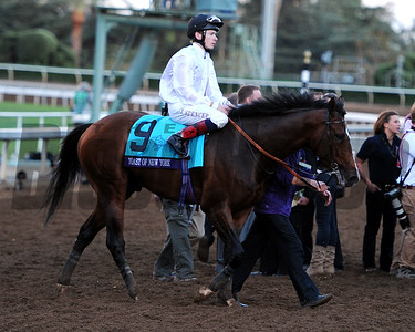 Bayern wins the 2014 Breeders' Cup Classic Dave Harmon Photo