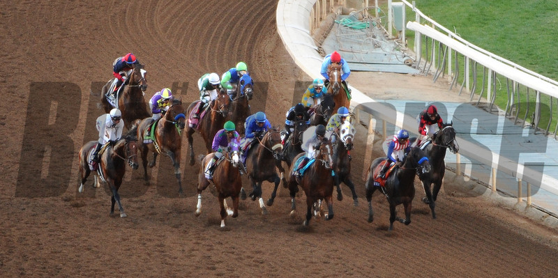 Horses in the Breeders Cup Classic.<br />  Photo by Wally Skalij