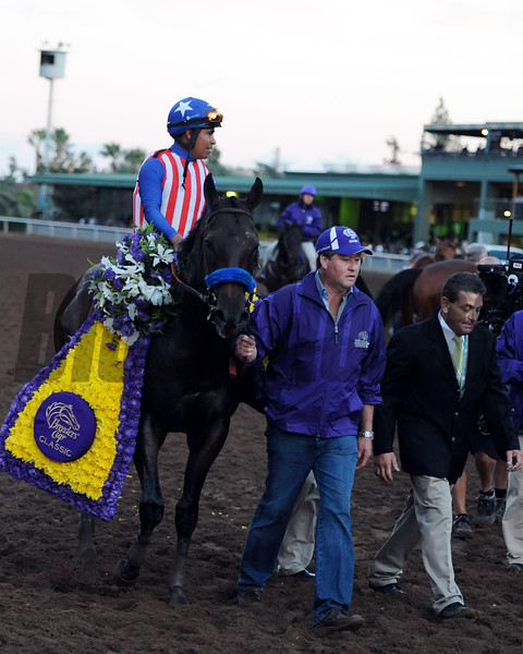 Bayern in the Breeders' Cup Classic.<br /> Dave Harmon Photo