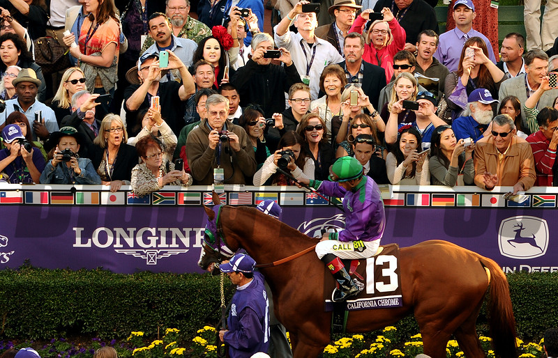 California Chrome walks through the paddock before the start of the Breeders Cup Classic at Santa Anita Saturday. Photo by Wally Skalij