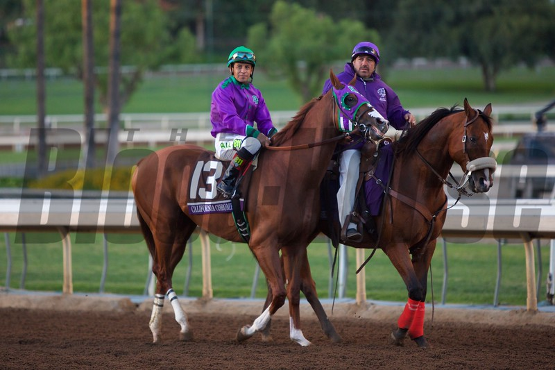 Victor Espinosa atop California Chrome before the Breeders' Cup Classic (G. I).<br /> Crawford Ifland
