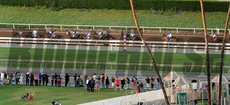 Horses in the Breeders Cup Classic. Photo by Wally Skalij
