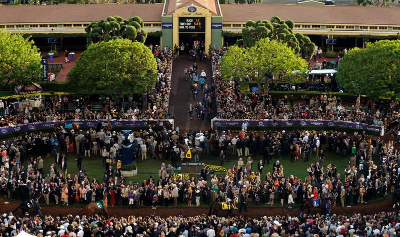 Horses walk to the paddock bedore the Breeders Cup Classic Saturday at Santa Anita.<br /> Wally Skalij Photo