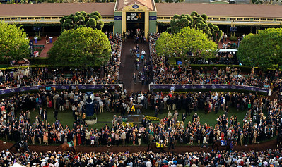 Horses walk to the paddock bedore the Breeders Cup Classic Saturday at Santa Anita. Wally Skalij Photo