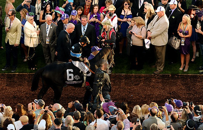 Shared Belief  walks by the connections of California Chrome in the paddock before the start of the Breeders Cup Classic at Santa Anita Saturday. Photo by Wally Skalij