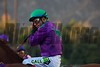 Victor Espinosa focuses atop California Chrome before the Breeders' Cup Classic (G. I).<br /> Crawford Ifland Photo