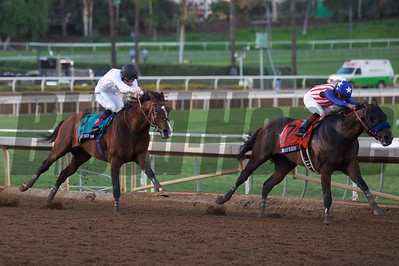 Bayern and Martin Garcia (right) lead the field around the final turn of the Breeders' Cup Classic (G. I). Crawford Ifland