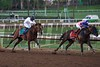 Bayern and Martin Garcia (right) lead the field around the final turn of the Breeders' Cup Classic (G. I).<br /> Crawford Ifland