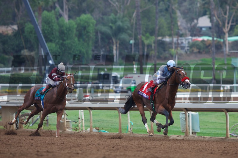 Goldencents, Rafael Bejerano aboard, beat out Tapiture and Rosie Napravnik to win the Breeders' Cup Dirt Mile (G. I).