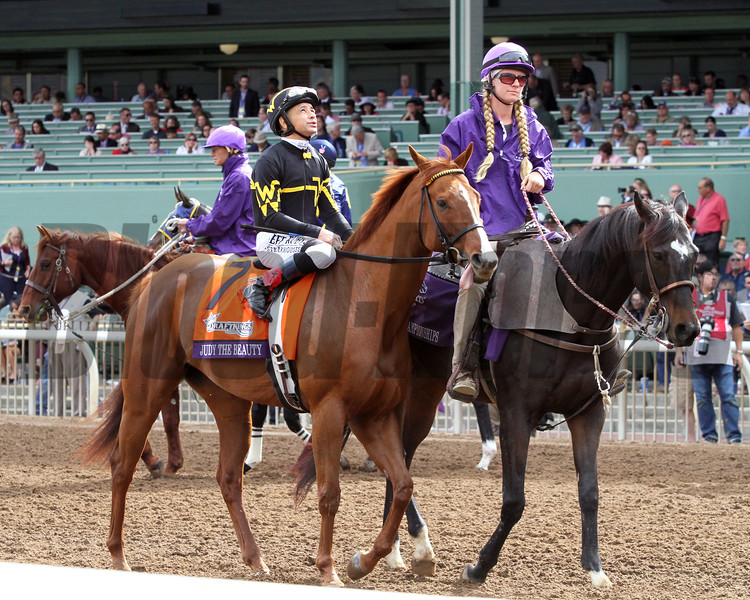 Judy the Beauty Mike Smith Breeders' Cup Filly & Mare Sprint Chad B. Harmon