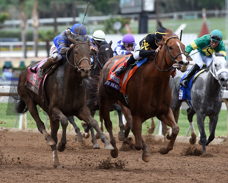 Judy the Beauty with jockey Mike Smith aboard out dueled Better Lucky with jockey Javier Castellano aboard to win the DraftKings Breeders' Cup Filly & Mare Sprints Nov. 1, 2014 at Santa Anita Race Track in Arcadia California.  Photo by Skip Dickstein