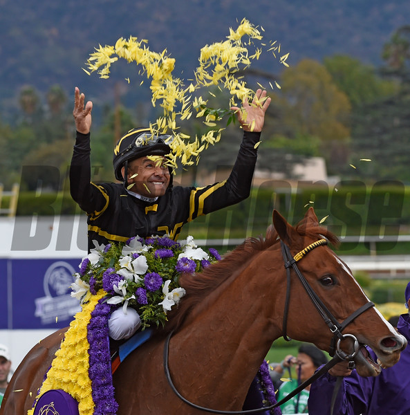 Jockey Mike Smith is jubillant after winning the DraftKings Breeders' Cup Filly & Mare Sprints Nov. 1, 2014 at Santa Anita Race Track in Arcadia California.  Photo by Skip Dickstein