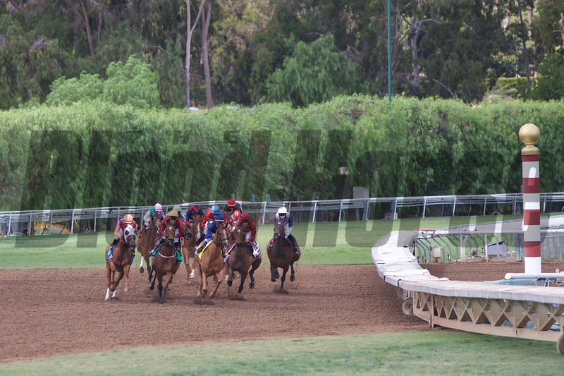 The field rounded the final turn in the Breeders' Cup Filly & Mare Turf (G. I) on October 31, 2014.