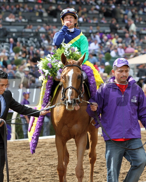 Dayatthespa Breeders Cup Filly & Mare Turf Chad B. Harmon