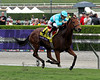 Lady Eli Breeders' Cup Juvenile Fillies Turf
