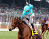 Lady Eli wins the 2014 Breeders' Cup Juvenile Fillies Turf. <br /> Dave Harmon Photo