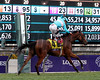 Lady Eli Breeders' Cup Juvenile Fillies Turf Chad B. Harmon