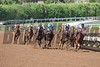 Take Charge Brandi (right) leads the field around the final turn in the Breeders' Cup Juvenile Fillies (G. I).