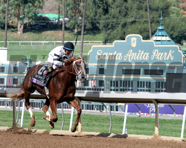 Take Charge Brandi Breeders' Cup Juvenile Fillies Chad B. Harmon