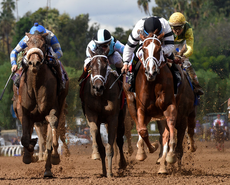 Take Charge Brandi with jockey Victor Espinoza wins the Breeders Cup Juvenile Fillies.  Photo by Skip Dickstein