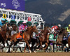 Take Charge Brandi Breeders' Cup Juvenile Fillies