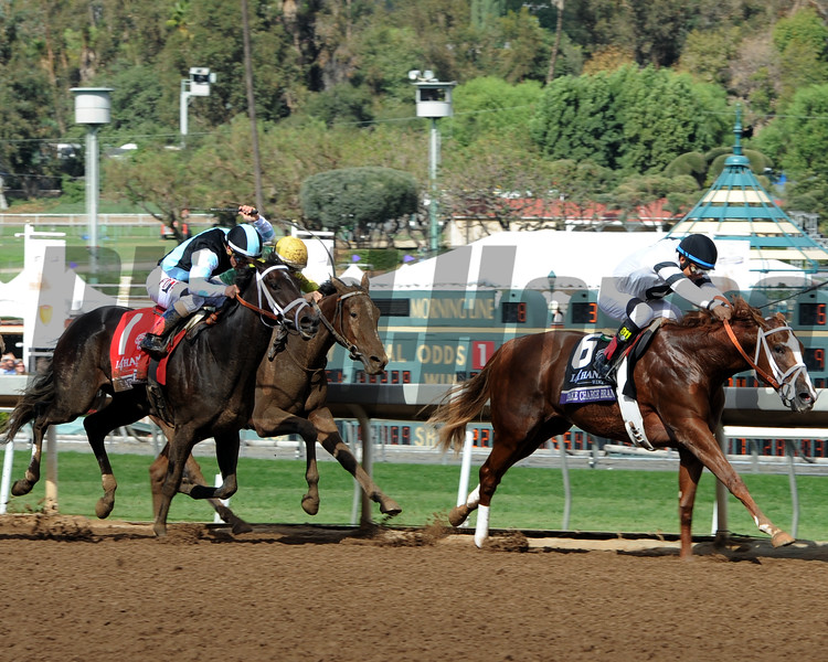 Take Charge Brandi wins the 2014 Breeders' Cup Juvenile Fillies. <br /> Dave Harmon Photo