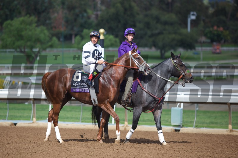 Victor Espinosa atop Take Charge Brandi before the Breeders' Cup Juvenile Fillies (G. I) on November 1, 2014.