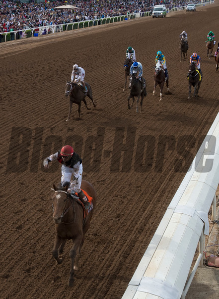 Texas Red wins the Breeders' Cup Juvenile.  Photo by Skip Dickstein