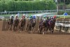 The field rounded the final turn of the Breeders' Cup Juvenile (G. I) on November 1, 2014 at Santa Anita.