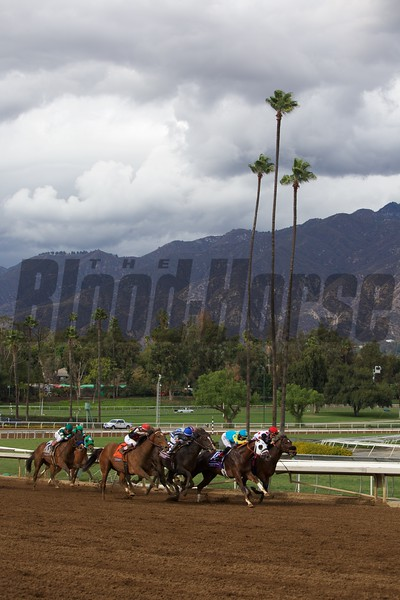 Texas Red, Kent Desormeaux up, came from behind to win the Breeders' Cup Juvenile (G. I).