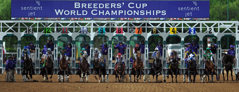 Breeders' Cup Juvenile...<br />  © 2014 Rick Samuels/The Blood-Horse