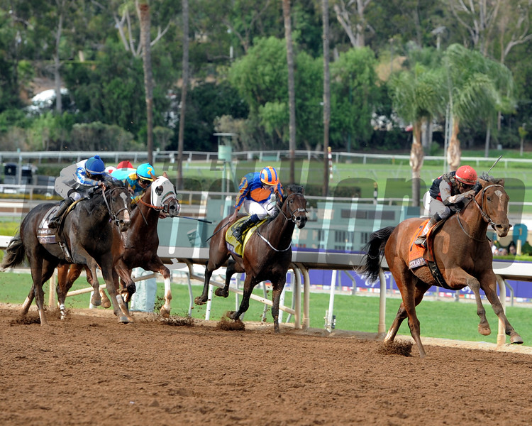 Texas Red wins the 2014 Breeders' Cup Juvenile.<br /> Dave Harmon Photo