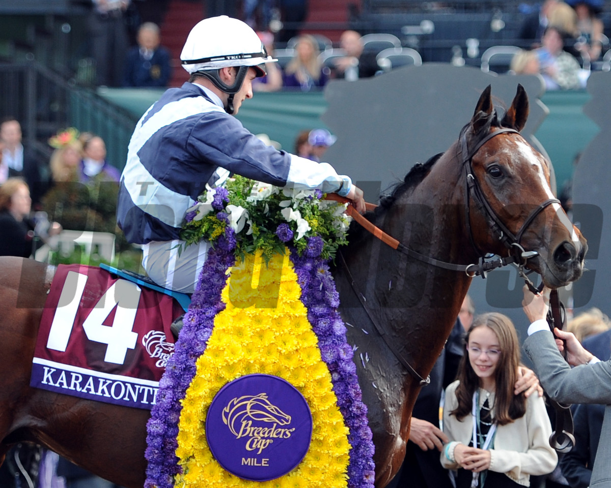 Karakontie wins the 2014 Breeders' Cup Mile. <br /> Dave Harmon Photo