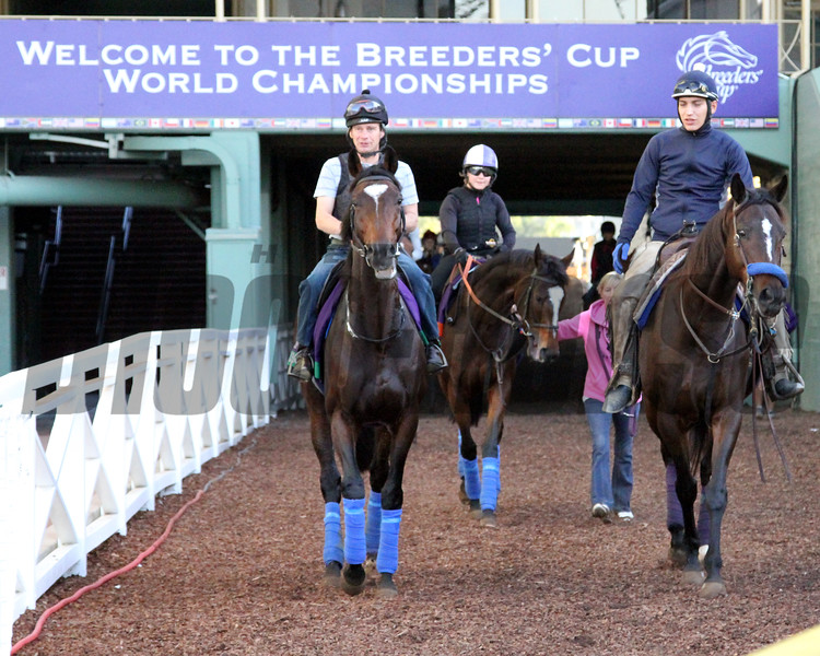 Breeders' Cup Santa Anita Park Chad B. Harmon