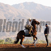 Breeders' Cup Lawn Ranger Santa Anita Park Chad B. Harmon