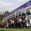 Breeders' Cup Scene Downhill Turf Course Start Chad B. Harmon