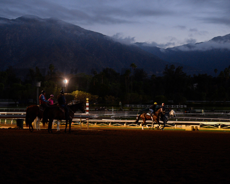 Breeders' Cup week works Oct. 26, 2014 at Santa Anita.<br /> Anne M. Eberhardt Photo