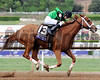 Work All Week wins the 2014 Breeders' Cup Xpressbet Sprint. <br /> Dave Harmon Photo