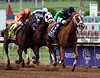 Work All Week wins the Breeders Cup Sprint.  Photo by Skip Dickstein